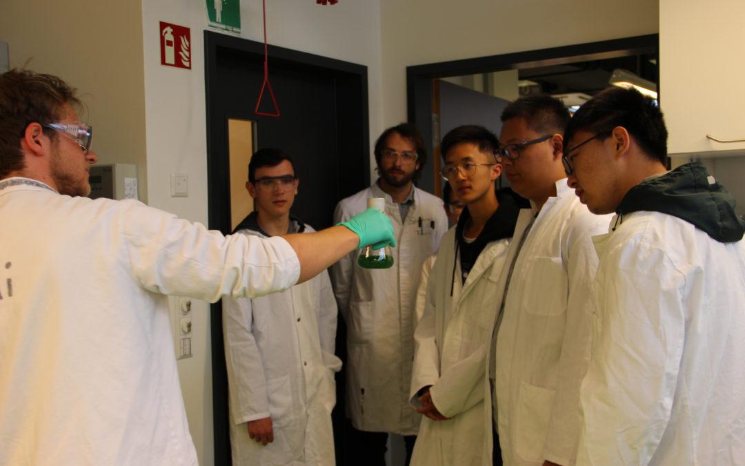 Schüler*innen zu Besuch im Biotechnologie-Labor der Hochschule Biberach