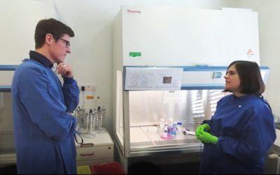Wissenschaft in 360 Grad: Virtueller Rundgang durch InnoSÜD-Labor Viral Vector Core Facility