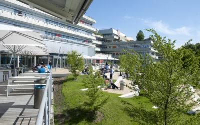 Wie steht es um die Gründungsbereitschaft an der Universität Ulm? InnoSÜD-Umfrage unter 380 Forschenden und Studierenden